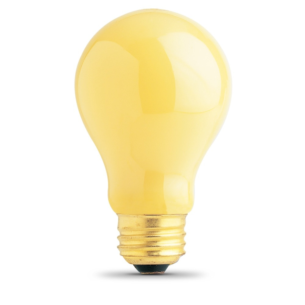 100 Watt Incandescent A19 Feit Electric